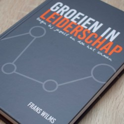 Leiderschapsdomeinen > Self-leadership: How good are you in leading yourself? | leiderschap