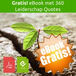 Gratis eBook > Self-leadership: How good are you in leadin... | Leiderschap